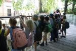 1ACD-zoo-082