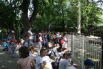 1ACD-zoo-083