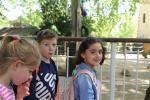 1ACD-zoo-210