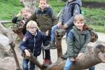 1D-kinderboerderij19-008
