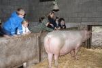 1D-kinderboerderij19-063