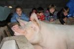 1D-kinderboerderij19-064