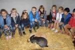 1D-kinderboerderij19-144