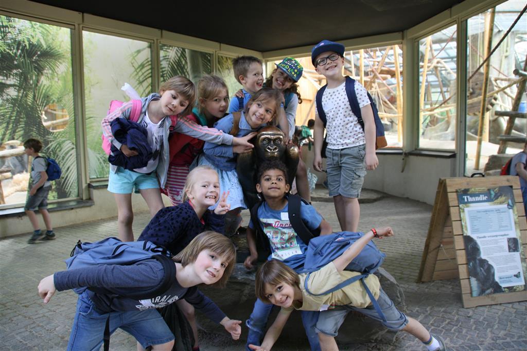 1A - C - D bezoekt Zoo